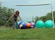 Treibball 1