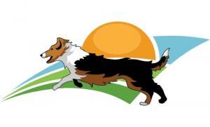 Club des chiens en mouvement